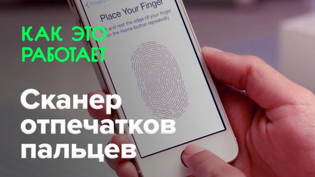 How does it work? | Fingerprint scanner