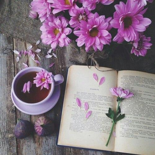 Увлекательное чтение-хобби