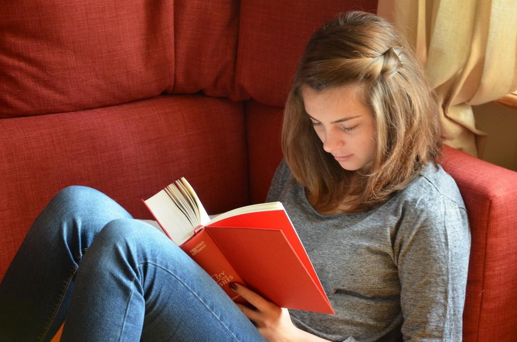 Девушка читает-зона для чтения