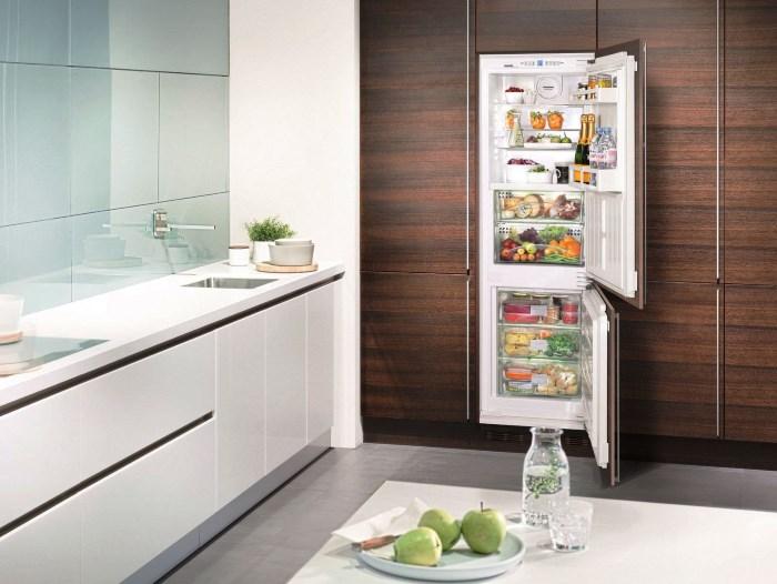 Как выбрать холодильник советы, нюансы, хитрости – Встроенный холодильник