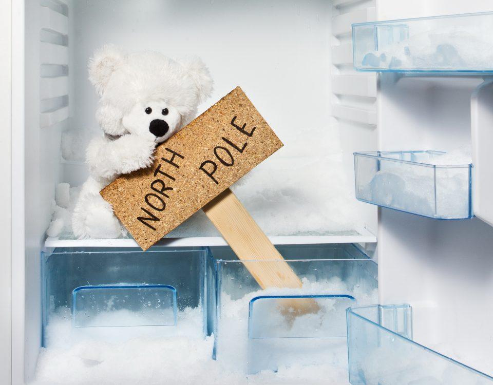 Как выбрать холодильник советы, нюансы, хитрости – Размораживание холодильника