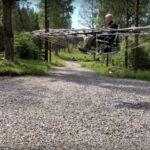 13581 Passenger drone-76 rotors (3 photos + video)
