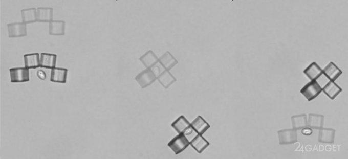 The nanobots vs cancer cells (2 videos)