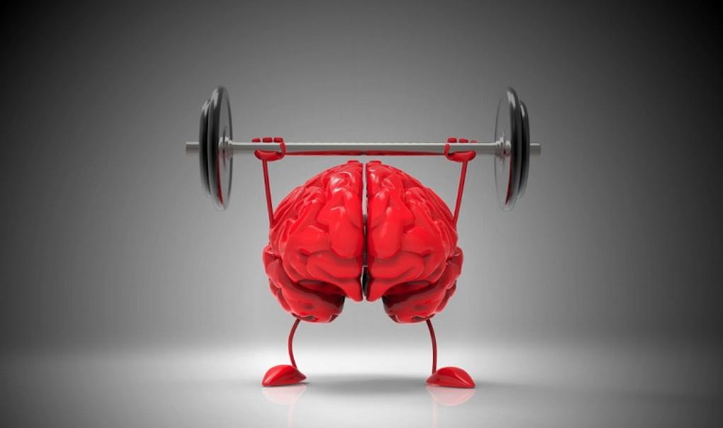 Нейробика-мозг