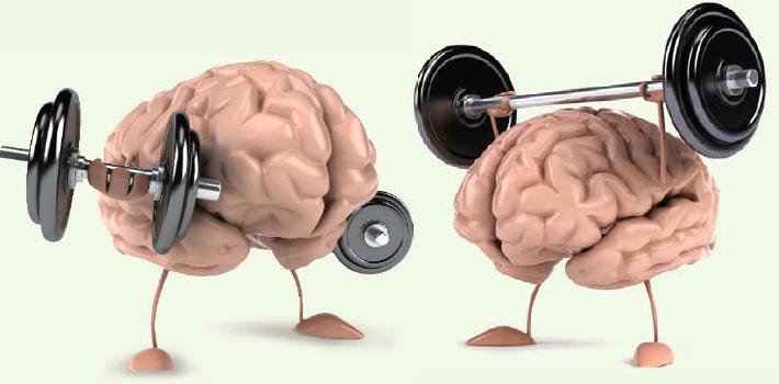 Стимуляция работы мозга-фото 2