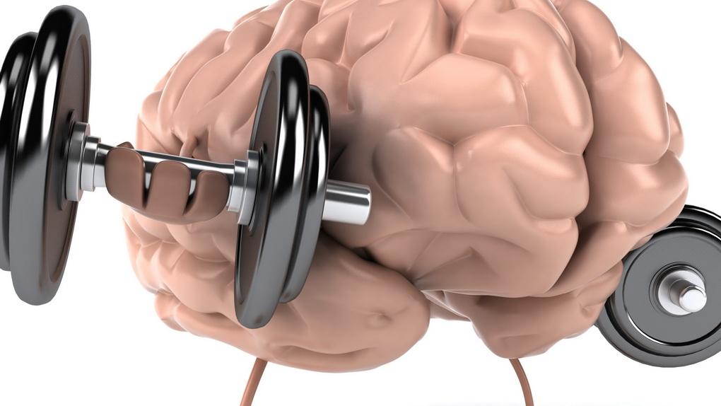Стимуляция работы мозга-фото 1