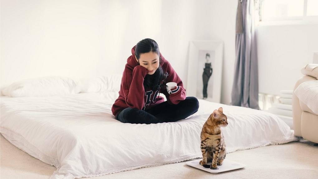 Xiaomi Mi Smart Scale 2 и кот-обновленные весы для активных людей фото 2