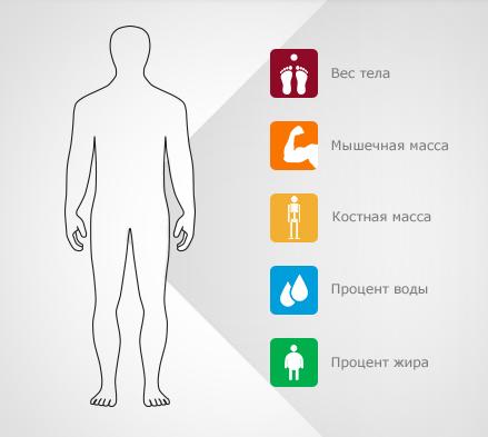 Диагностические смарт-весы Prestigio-функциональность