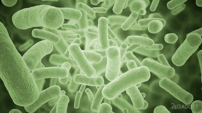 The effectiveness of antibiotics will determine rapid test (3 photos)