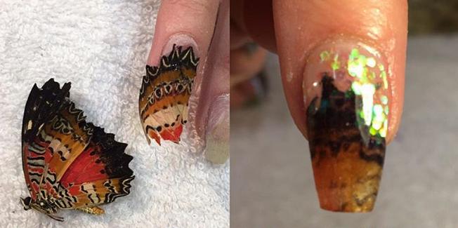 Ник Кэсети-ногти с останками пресмыкающихся