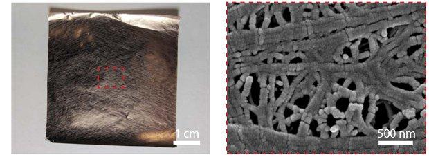 Одежда из двусторонней ткани согреет и охладит (4 фото)