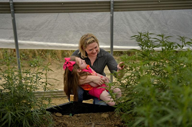 World Health Organization clashes with DEA on marijuana compound CBD